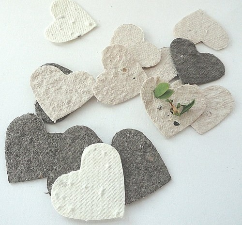 awesome and creative gifts for wedding guests - may your love grow with wedding seeds