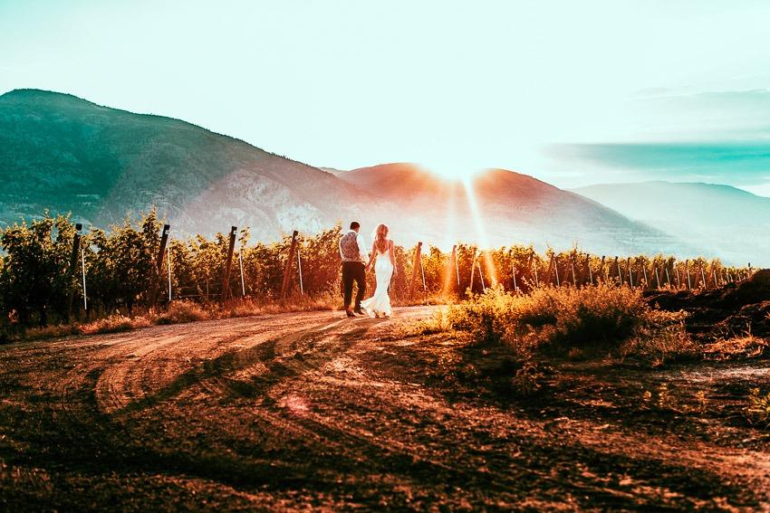 Romantic Vineyard Wedding Photos at Sunset