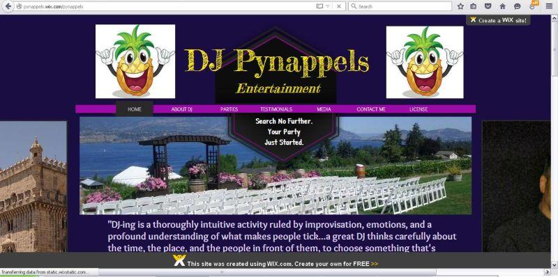 DJ Pynappels