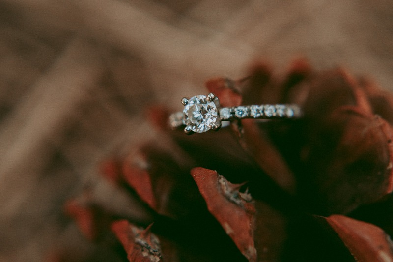 pine cone wedding ring engagement band photo in the forest - forest wedding, forest engagement, forest diamond