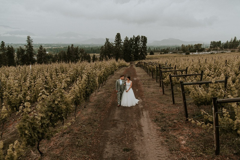 wedding reception at tantalus winery - 1670 DeHart Rd, Kelowna, BC V1W 4N6