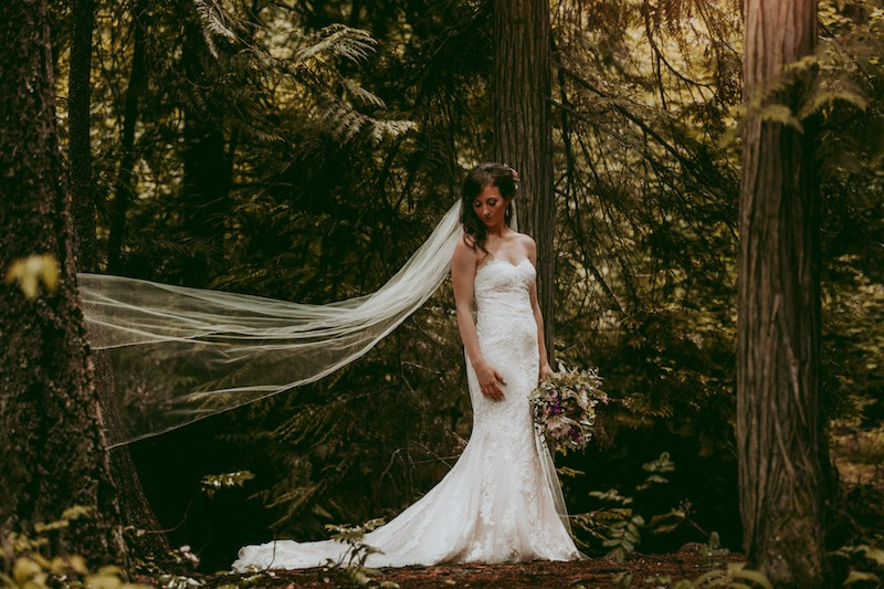 Forest Mountain Wedding Photos by Kelowna Wedding Photographer Tailored Fit Photography